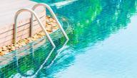 التخلص من الطحالب في الحوض