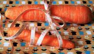 أسرع حمية غذائية لإنقاص الوزن
