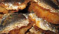 أطباق السردين الجزائرية