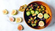 الطعام والشراب في القرآن الكريم