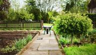 كيفية عمل حديقة منزلية صغيرة