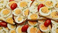 أضرار وفوائد البيض