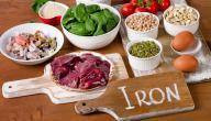 أطعمة لعلاج الأنيميا