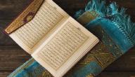 أحاديث عن فضل القرآن