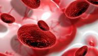 ماذا يعني نقص الهيموجلوبين في الدم