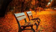 أقوال عن الخريف