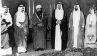 بحث عن دول مجلس التعاون الخليجي