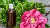 كيفية استخدام زيت الورد للبشرة الدهنية
