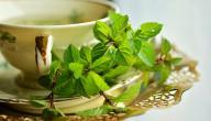 أفضل علاج بالأعشاب لجرثومة المعدة