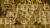 كم عدد أبناء الملك عبد العزيز
