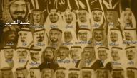 كم عدد ابناء الملك عبد العزيز