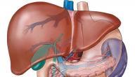 كيفية انتقال فيروس الكبد الوبائي