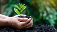 كيفية المحافظة على الغلاف الجوي