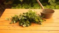أعشاب تحتوي على الكولاجين