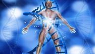 ما هو علم الفسيولوجيا