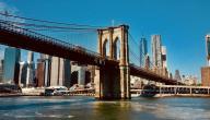 أعظم جسور العالم