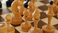 كيف تلعب شطرنج