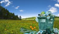 بحث عن مشاكل البيئة