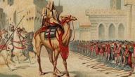 أهم أعمال صلاح الدين الأيوبى