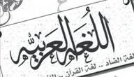 أجمل ما قرأت عن اللغة العربية