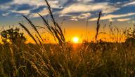 عبارات عن غروب الشمس
