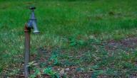 طرق ترشيد استهلاك المياه في الزراعة