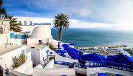 ما هي مساحة تونس وعدد سكانها