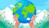 المحافظة على التنوع الحيوي