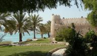 تقرير عن تراث الإمارات