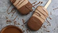 طريقة عمل آيس كريم سهل بالشوكولاتة