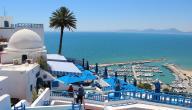 ما هي مساحة تونس