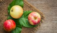 ما هو الفيتامين الموجود في التفاح