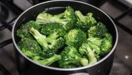 ما هو الطعام الغني بالبروتين