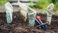أفكار للحصول على المال