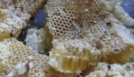 أهم فوائد العسل