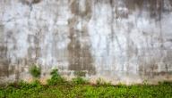 كيفية علاج رطوبة الجدران