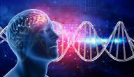 أعراض التهاب قشرة الدماغ