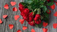 أجمل رسائل عيد الحب