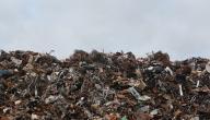 آثار النفايات على البيئة