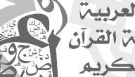 كيف نحمي اللغة العربية