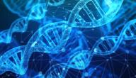 أثر العلم في حياة الإنسان