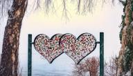 ما هو الحب العذري