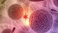 ما هو السرطان الحميد والخبيث