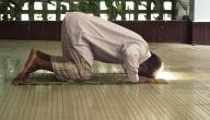حكم الصلاة دون وضوء