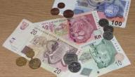 ما هي عملة موزمبيق
