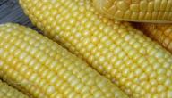كيف نسلق الذرة