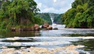 ما هو أطول نهر في العالم وكم يبلغ طوله
