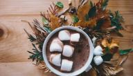 طريقة عمل شوكولاته بالكاكاو
