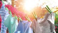 كيفية التخلص من البق في الملابس