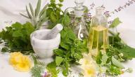 أعشاب تساعد على زيادة هرمون الأنوثة